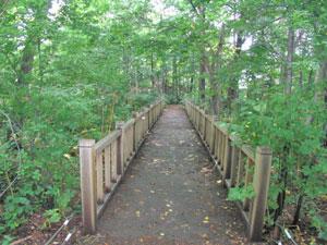 篠路五ノ戸の森緑地