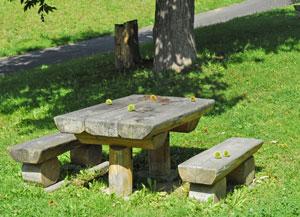 北ノ沢公園