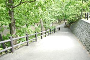 藻南公園 遊歩道