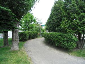 西野北公園