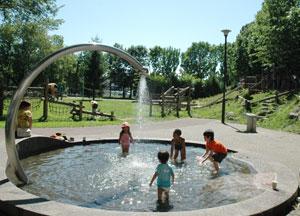 若葉公園 水遊び